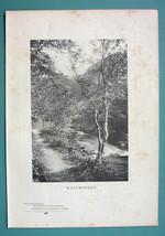 FOREST SOLITUDE Stream Walkway Bridge - 1901 Collodian Print - $6.42