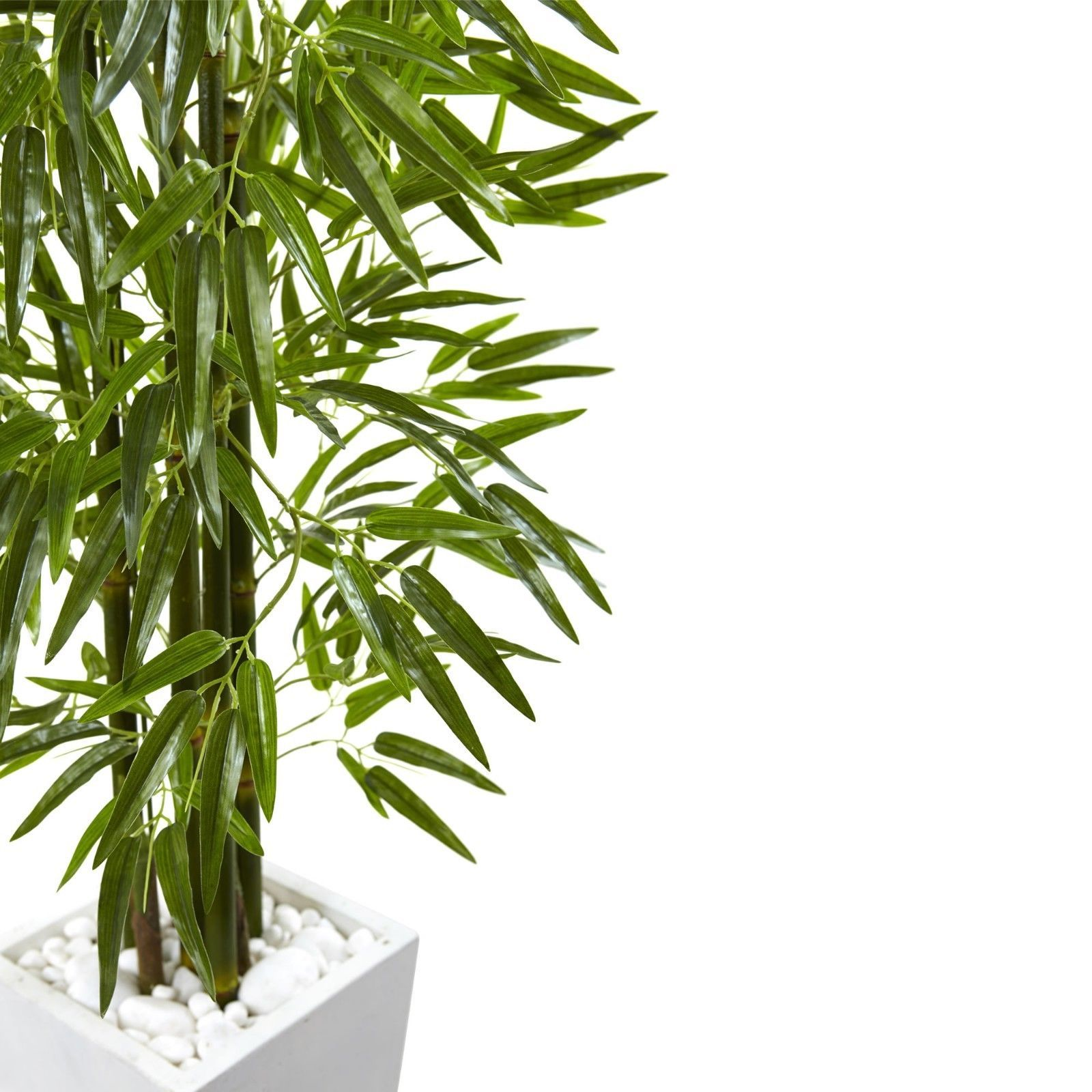 Bamboo Tree With White Planter UV Resistant (Indoor/Outdoor)