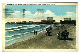 Ponies on the Beach Million Dollar Pier Postcard Atlantic City New Jerse... - $11.88