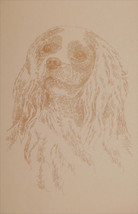 Cavalier King Charles Spaniel Dog Art Portrait #47 Kline adds dog name free. - $49.95