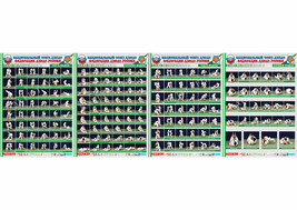 Posters JUDO. Green belt 1+1+1+1 poster.The technique of judo. - $22.35