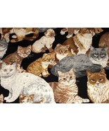 1 Yd Vintage Novelty Animal Print Cranston Quilt Fabric Cats Kittens on ... - $9.99