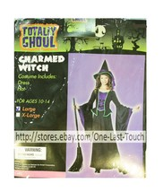 TOTALLY GHOUL 2pc Dress+Hat CHARMED WITCH For Girl HALLOWEEN COSTUME Lar... - $17.54