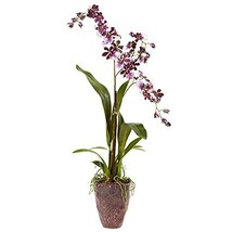 Nearly Natural 4833 Dancing Lady Orchid with Textured Vase - $45.65