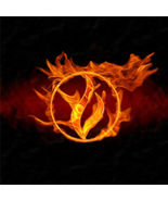 Fire-Force Elemental Attunement – Empower Your Life – Physical and Spiri... - $100.00