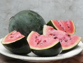 SHIP FROM US 10 Seeds Sugar Baby Watermelon,DIY Fruit Seeds AM - $23.99