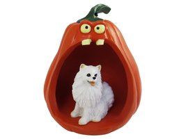 American Eskimo Miniature Halloween Statue Figurine and Spooky Pumpkin - $24.99
