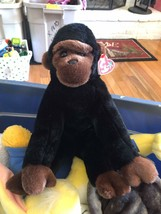 TY Beanie Buddy. CONGO 1999 The Blk/brown Gorilla With Tag - $8.90