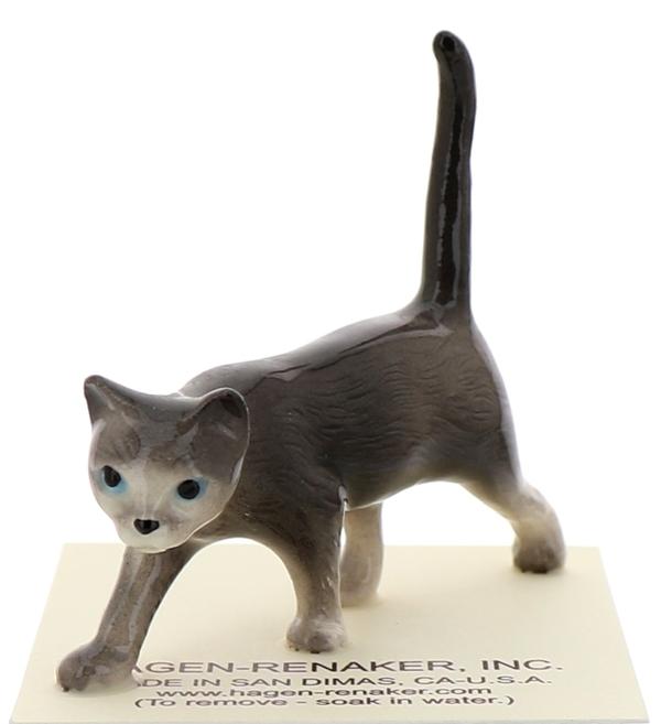 Gray cats5