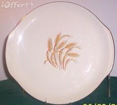 EAMES MID CENTURY MODERN--SALEM CHINA BOUNTIFUL CHOP PLATE - $29.95