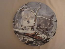 WOLF collector plate EYES IN THE MIST Daniel Renn Pierce WOLVES Wildlife - $23.99