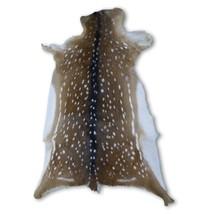 "Rug Grade Axis Deer Skin Hide Size: 38"" X 25"" in Rug Grade Axis Skin Axi... - $197.01"