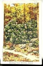 Curt Teich Linen Greetings Mexico Maine Postcard 1947 - $2.12