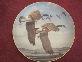 DAVIS MAASS GOOSE collector plate LAST OF THE SEASON Water Birds CANADA ... - $19.00
