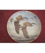DAVIS MAASS GOOSE collector plate LAST OF THE SEASON Water Birds CANADA ... - $19.00