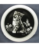 Are You a Flower? Kittens World Collector Plate Plate Rudy Droguett Cat 84-R57-8 - $21.95