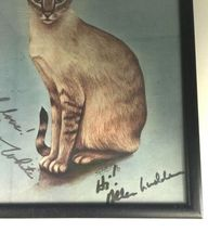 """Framed Signed Original Betty White Autograph All Cats Print 9x12"""" Golden Girls image 4"""