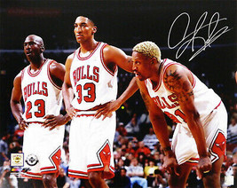 DENNIS RODMAN Signed Chicago BULLS 16x20 Photo w/Michael Jordan & Pippen... - £65.37 GBP