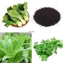 10000 STÜCKE 30 Arten Natürliche Gemüse Vielzahl Garten Pack DL0 - $2.00