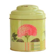 Kylin Express Unique Style Double-Deck Lids Tin Tea Canister Tea Storage Contain - $12.49