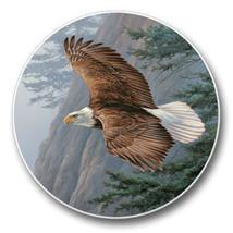 Majestic Soaring Eagle Auto Coasters - $199,63 MXN