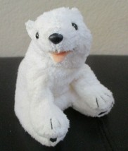 Ty Beanie Baby Aurora The Polar Bear NO TAG - $4.94