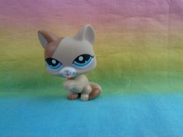 Littlest Pet Shop Brown Tan Sitting Kitty Cat Licking Paw Teal Green Eye... - $7.30