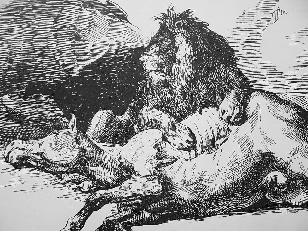 ANIMALS Lion & Dead Horse - 1876 Antique Print