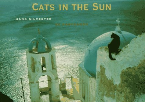 Primary image for Cats in the Sun Postcard Book Hans Silvester