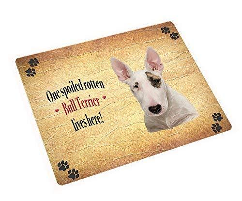 Bull Terrier Spoiled Rotten Dog Art Portrait Print Woven Throw Sherpa Plush Flee