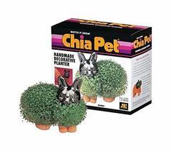 Chia Pet Bunny - Multi Planter - Grow a Chia Pet Bunny or Your Favorite Plant - $22.95