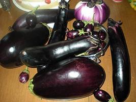 25 Seeds of Solanum melongena L. - Exclusive Eggplant Mix - $11.74