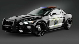 2017 Ford Mustang Highway Patrol Car Poster 24 X 36 Inch Looks Awesome!! - $21.77