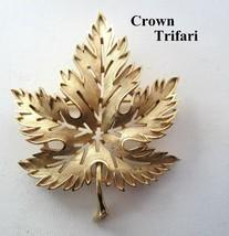Vintage 1950's Signed Crown Trifari Brushed Gold Tone Maple Leaf Brooch Pin - $19.79