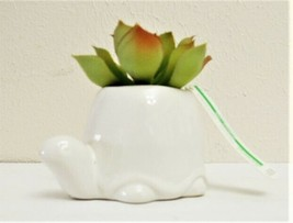 Faux Succulent Cactus in White Turtle Pot - CUTE MINI DECOR! - $12.95