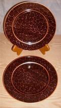"Nick & Nora Home 222 Fifth Genuine Stoneware ""Crocodile"" Salad Plates Se... - $13.99"