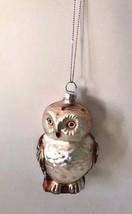Owl Ornament Christmas Glass Bird New Kappa Kappa School Mascot Glitter ... - $21.33