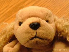 Ty Beanie Babies Spunky the Dog - $7.99