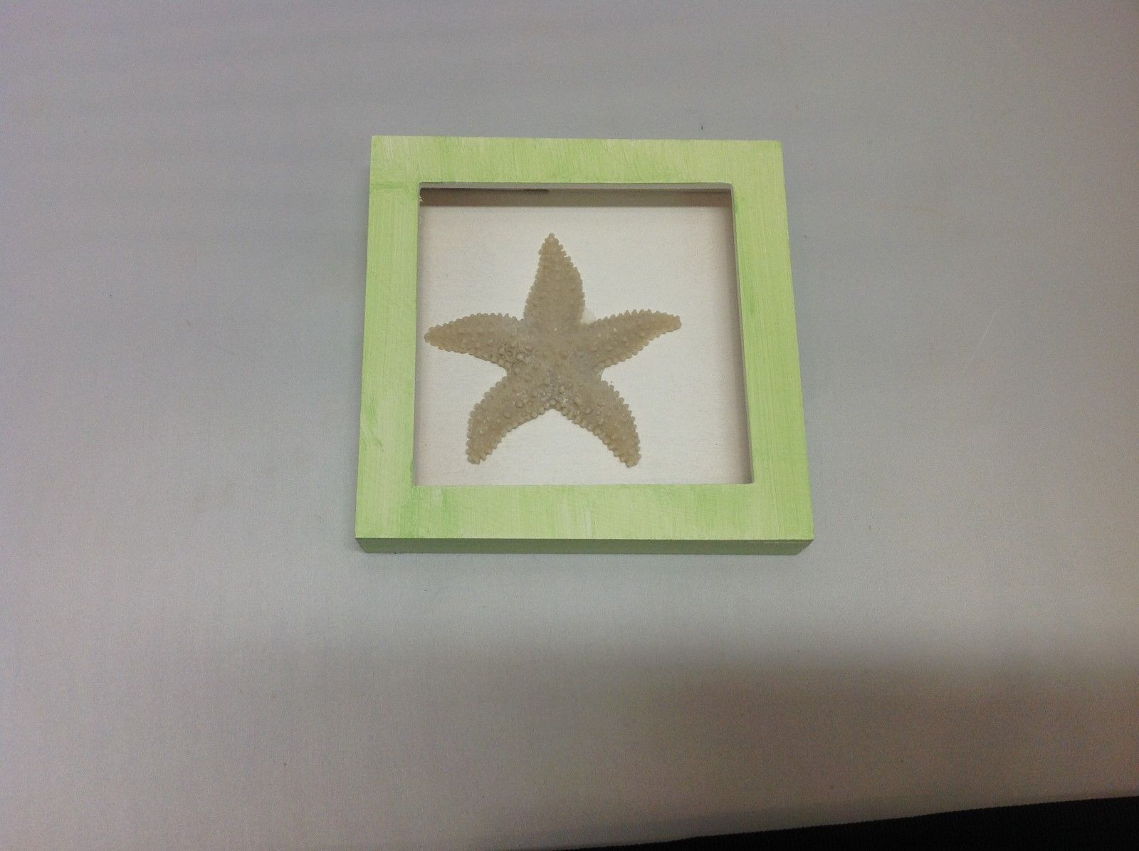 NEW Green and Brown Resin Starfish Shadow Box