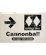 Cannonball Double Diamond Snowboarder Snowboarding Snow Sports Aluminum ... - $17.95
