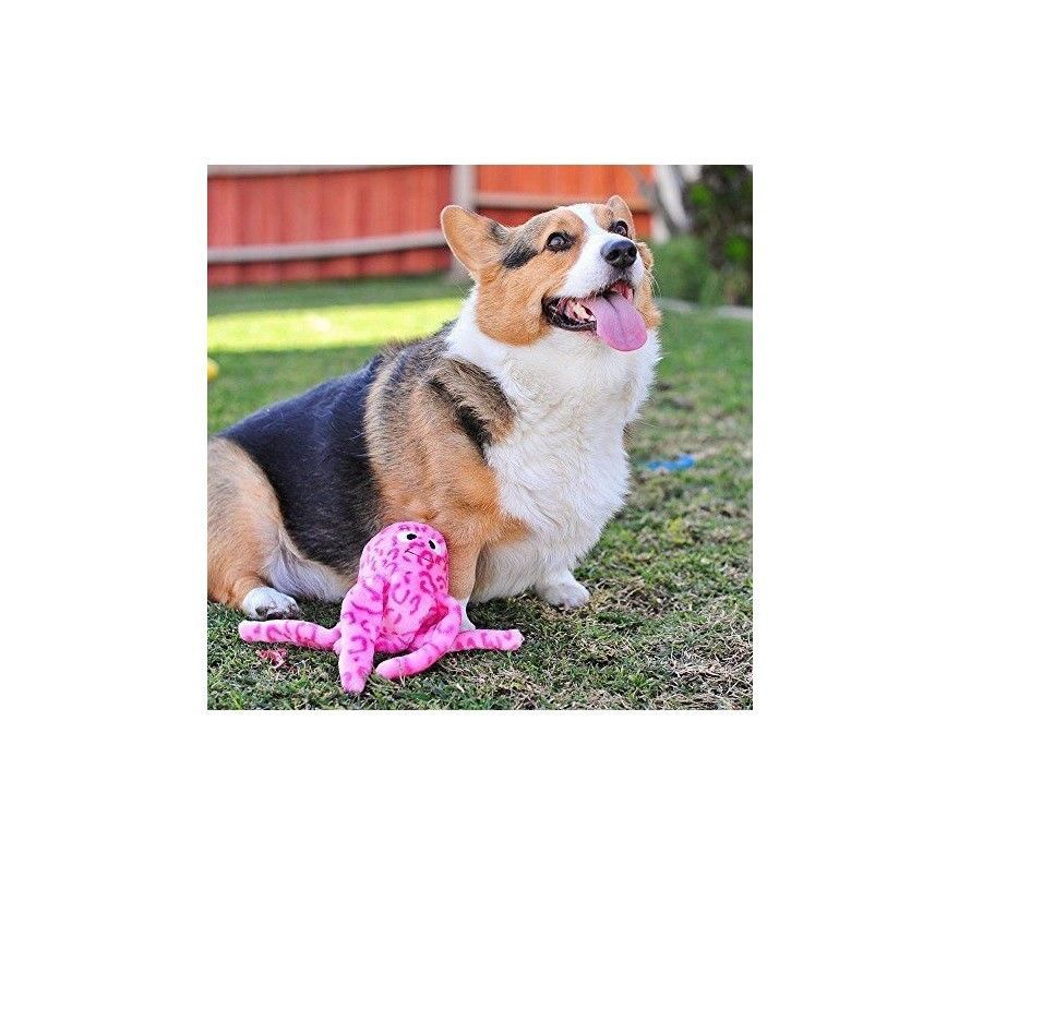 Floppy Jelly Squeaky Plush Toy for Dog - thrown around by happy dogs PINK