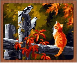 "Cat Birds Animal 16X20"" Paint By Number Kit DIY Oil Painting on Canvas F... - $8.31"