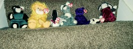 Ty Beanie Baby Lot of 9 Princess, Loosy, Chops, Lilly, Kitty, Brisbane, ... - $42.09