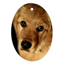 Golden Retriever Puppy Puppies Dog Animal (Oval) Ornaments Decoration Ch... - $3.99