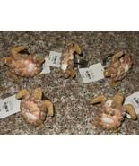 4 Pier 1 Sea Shell Turtles Nautical Napkin Rings Holders NWT FREE SHIPPING - $39.59