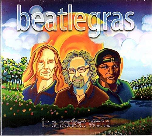 Primary image for In a Perfect World [Audio CD] Beatlegras