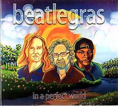 In a Perfect World [Audio CD] Beatlegras - $7.95