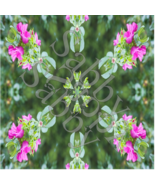 Kaleidoscope Background 2a-Digital ClipArt-Gift Tag-Tshirt-Flowers-Gift ... - $5.00