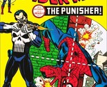 Comic   spiderman   the punisher thumb155 crop