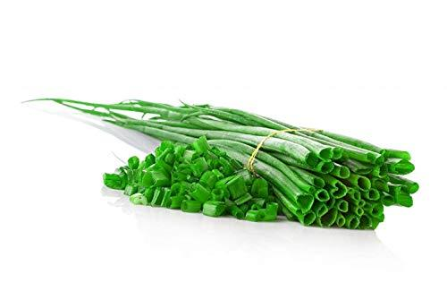 Primary image for 2,000 Seeds Chives Green Onion Seeds TkSmartbuy
